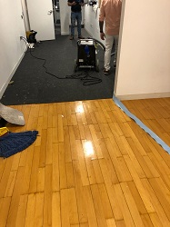 Water Damage Restoration Park Slope
